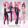 2NE1 - Collection (CD+2DVD+Photobook).jpg