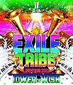 EXILE TRIBE LIVE TOUR 2012 ~TOWER OF WISH~ BR.jpg