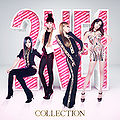 2NE1 - Collection (CD+DVD).jpg
