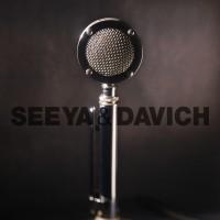 Seeya_Geurigo_Davichi