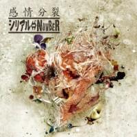 Serial_NUMBER_-_Kanjou_Bunretsu